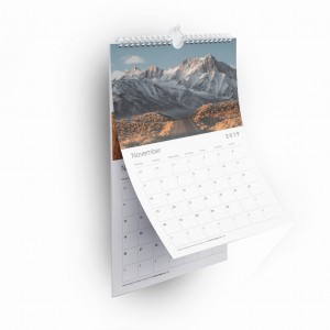 A4 Easy Month to View Spiral Bound Wall Calendar with 6 Double-Sided Cards and a Cover